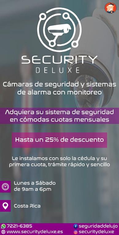 SECURITY DELUXE.jpeg