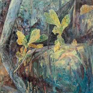 Reeds 19 (Jessie Davies)