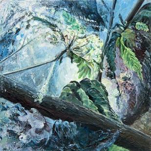 Reeds 02 (Jessie Davies)