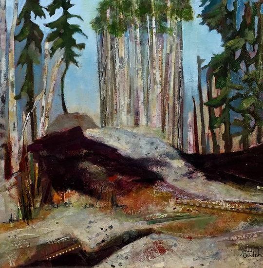May Skiff - West Bragg Creek