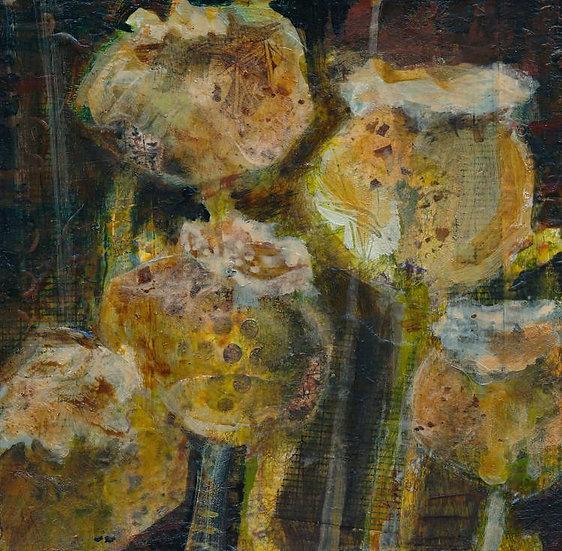 In the Garden - Poppy Pods