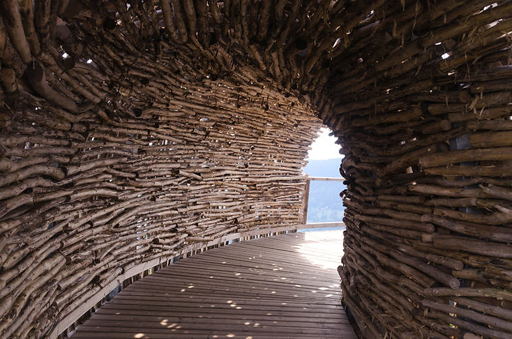 architecture-attraction-bamboo-construct
