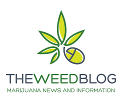 420 media and THE WEED BLOG