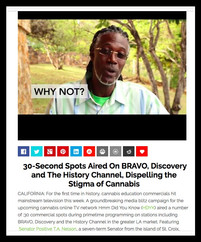 MJ NEWS NETWORK