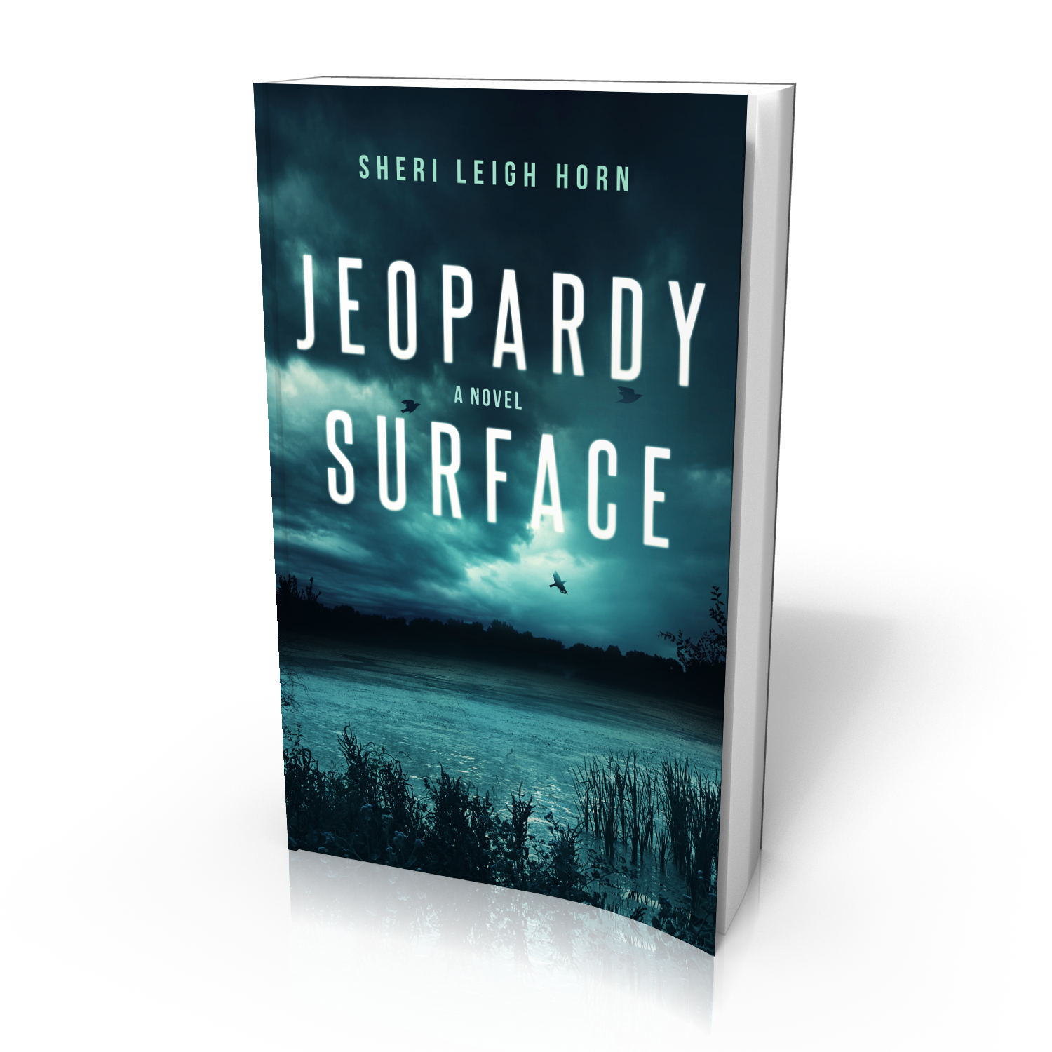 Jeopardy Surface - 3D
