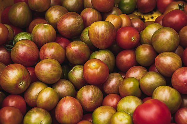 wholesale organic produce for restaurants and grocery stores