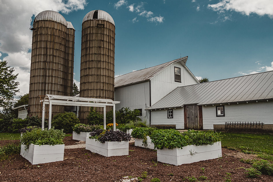 Garden Wedding in Illinois