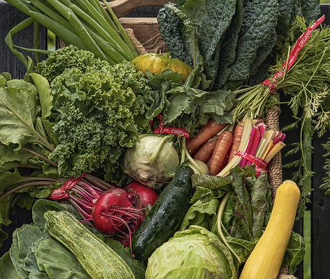 Organic Produce, vegetables, local farm produce