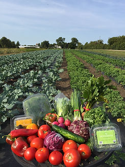 subscription box for local organic produce near St. Charles, Illinois