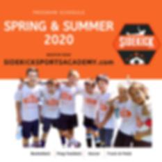 Spring Summer 2020 Promo Sidekick.png