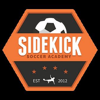 soccer, sidekick soccer