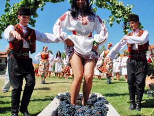 Vinhos Búlgaros Chegam em Goiânia