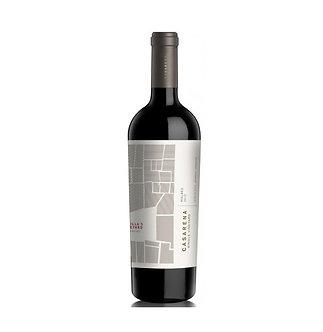 Casarena Agrelo Lauren's Single Vineyard Petit Verdot 2013