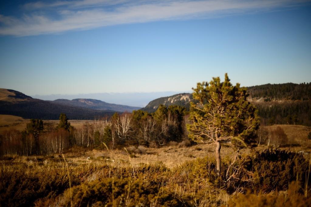 отдых в горах адыгеи