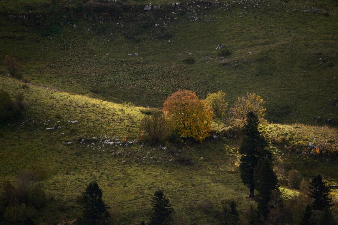 плато лагонаки каменномостский