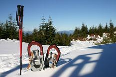 snowshoes-2344196_1280.jpg