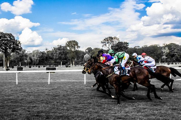 horses_race_jockey_gallop_h.jpg