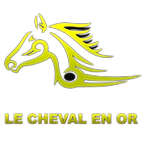 logo-lechevalenor1 TRANSPARENT.png
