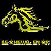 logo-lechevalenor1 TRANSPARENT.png