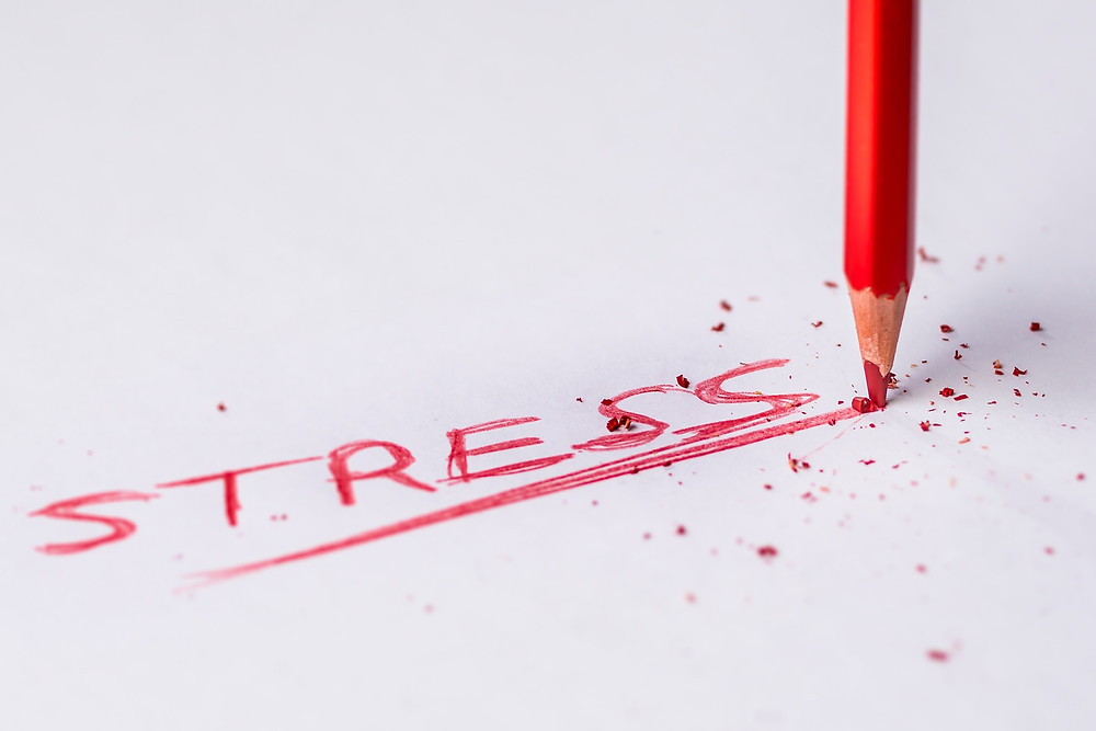 "Image of pencil writing ""stress"" in red ink"