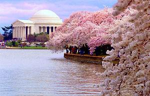 Jefferson Memorial  Franc-Maçonnerie française Washington DC