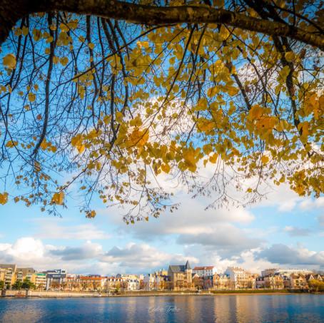 vichy automne
