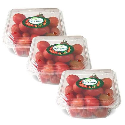 העגבניות של נח - שרי אדום - 3 מארזים