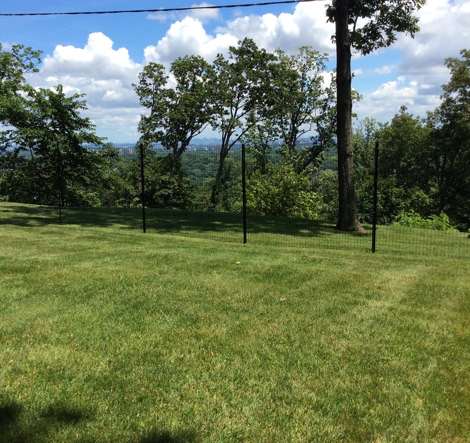 Top quality chaink link fence in Ramsey NJ