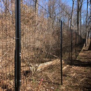 deer fence drive stakes.jpg
