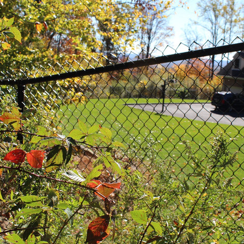 Residential chain link fence Tewksbury NJ