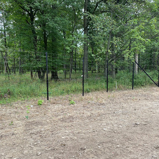 Deer Fence Granduated Wire on Drive Stakes.jpg