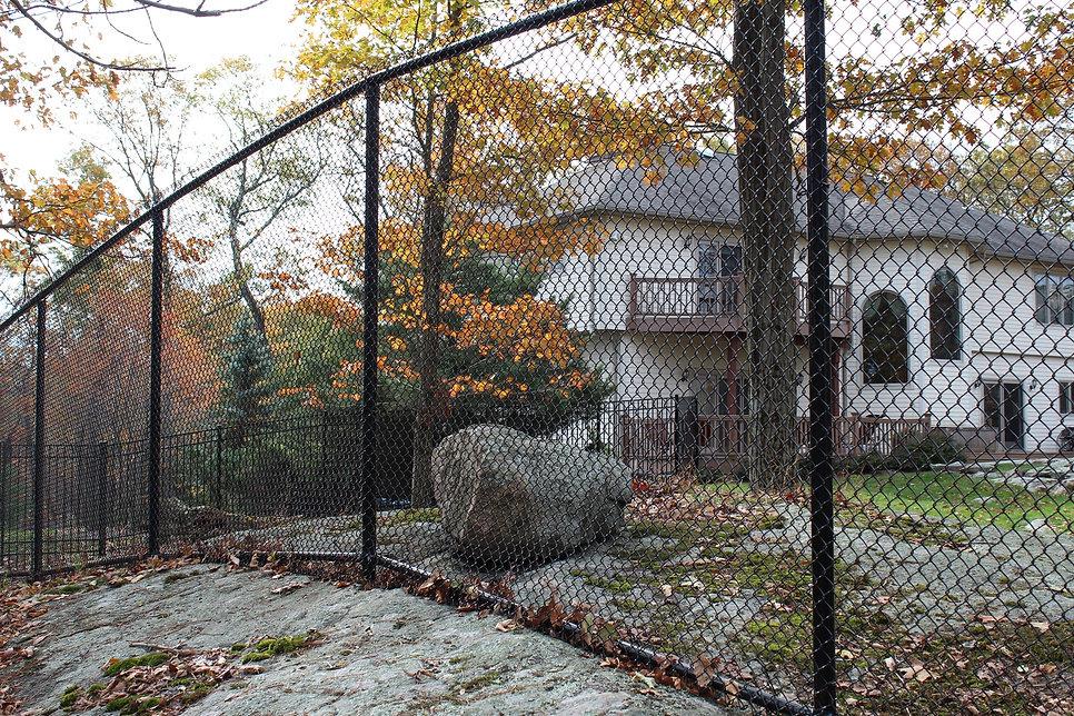 Deer fence - chain link fence Saddle River, NJ