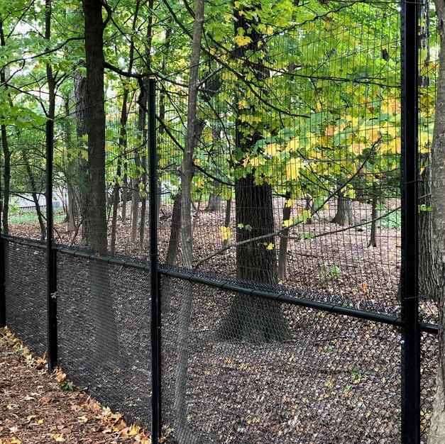deer fence4.jpg