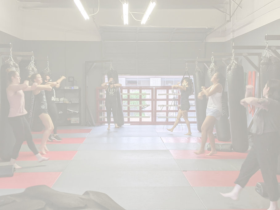 Womens self defense class