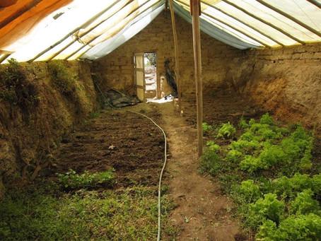 Como construir invernaderos subterráneos para cultivar todo el año