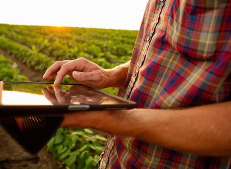 Programas informáticos agrícolas para mejorar el rendimiento de los campos