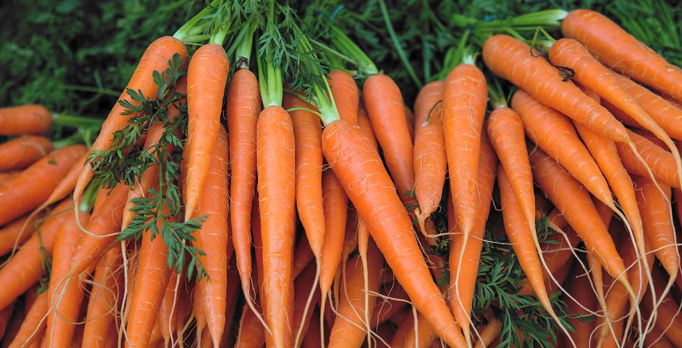 1015995028 Carrots.jpg