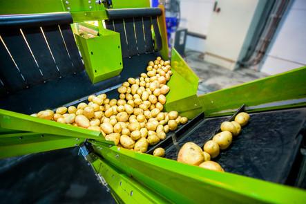 KisanHub solutions potatoes