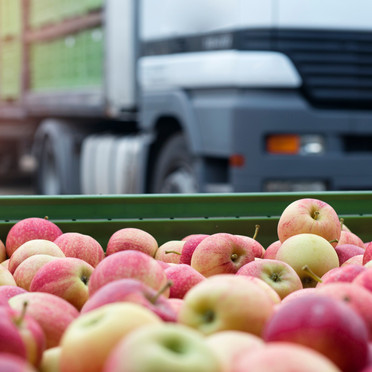 Full crop visibility ensures quality and commercial returns