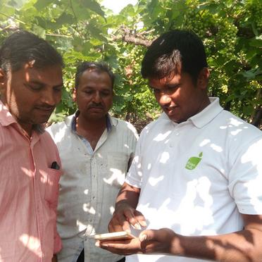 Inside KisanHub   Q&A with Gaurav Shah   Customer Success Manager