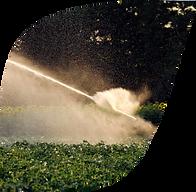 KisanHub software solutions irrigation.p