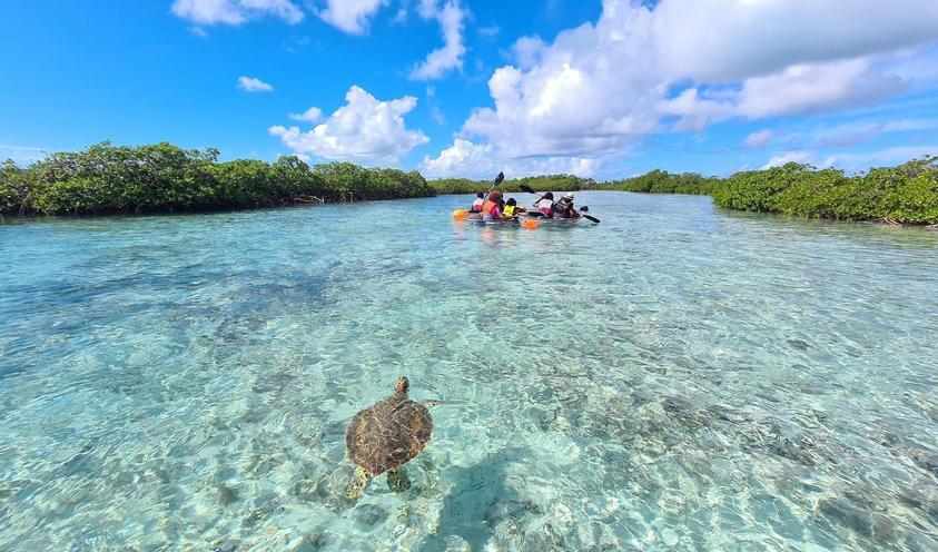 Private Kayak Tour