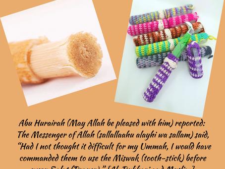 Advantages of Miswak / Siwak