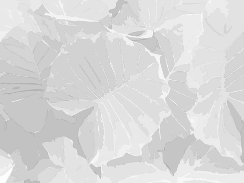 Tropical Leaves grey and white