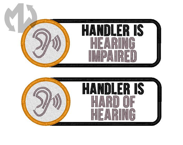 Visible Disabilities - Hearing