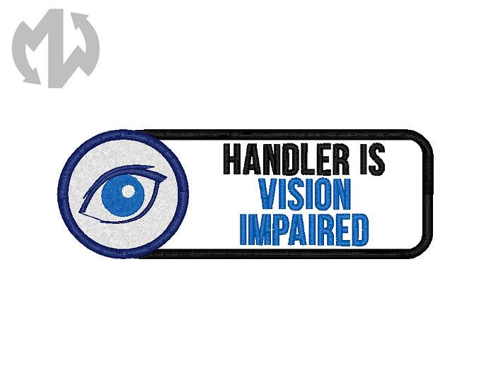 Visible Disabilities - Vision