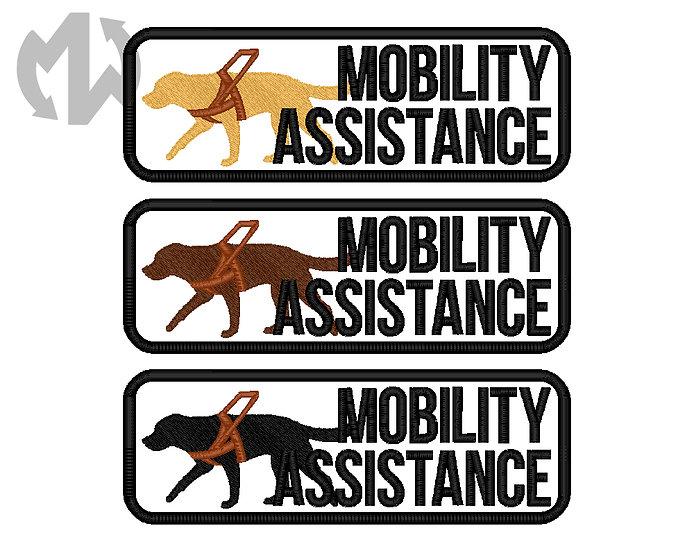 Mobility Assistance Labrador Retriever