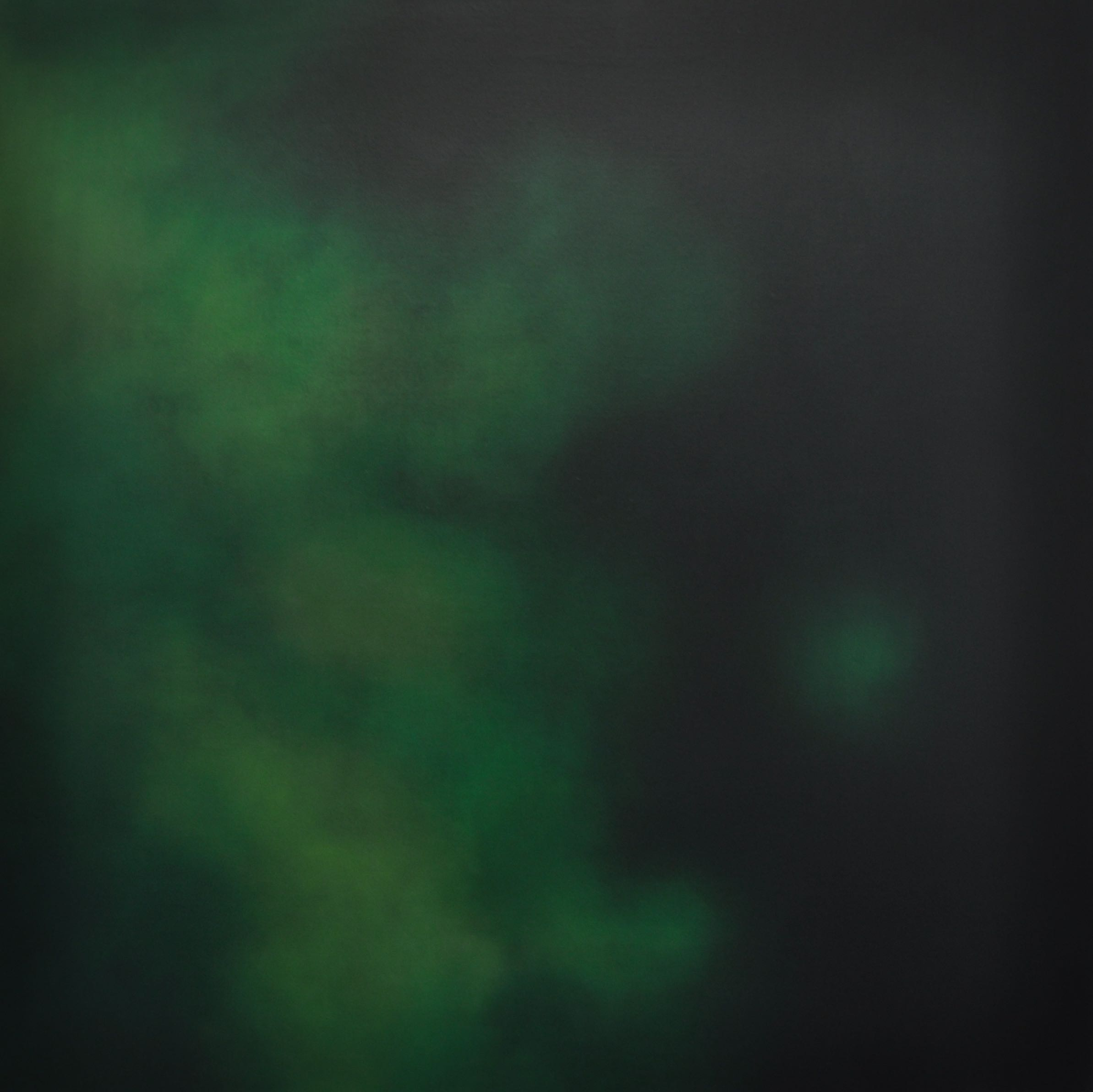 Green into Black 120x120cm 2008