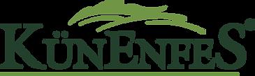 logo arkaplansız.png