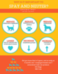 WHY_SPAY_AND_NEUTER_3-791x1024.webp.png